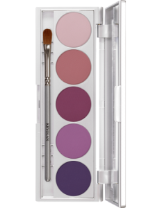 KRYOLAN SHADES 5 COLORS PARIS PALETA 5 CIENI DO POWIEK